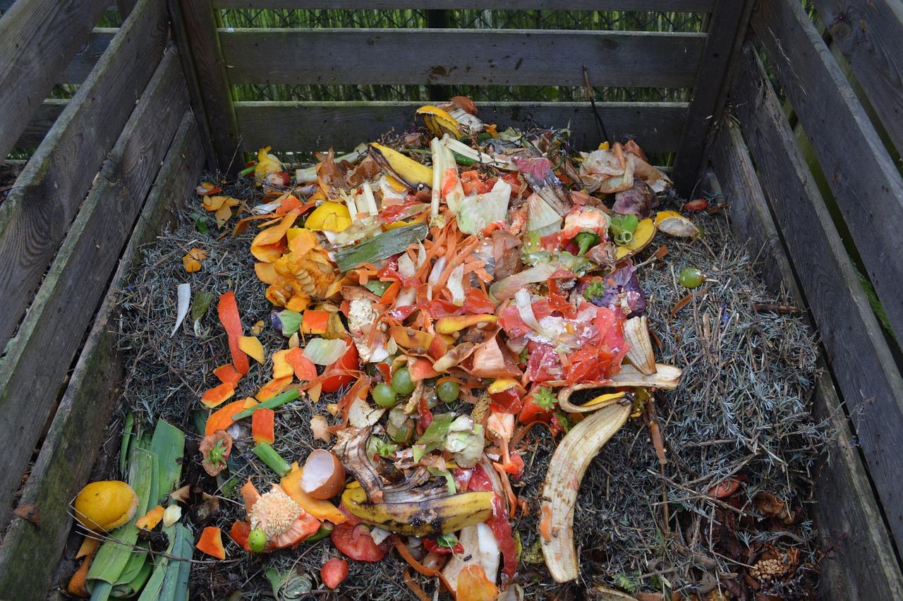 Vy ešte nemáte kompostér? Kompostovanie v ňom je jednoduché, rýchle a ekologické