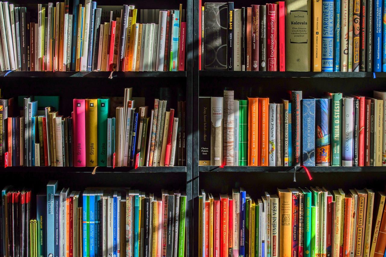 Domáca knižnica patrí tiež medzi nábytok, ktorý môže byť nielen praktický, ale aj dizajnovo zaujímavý
