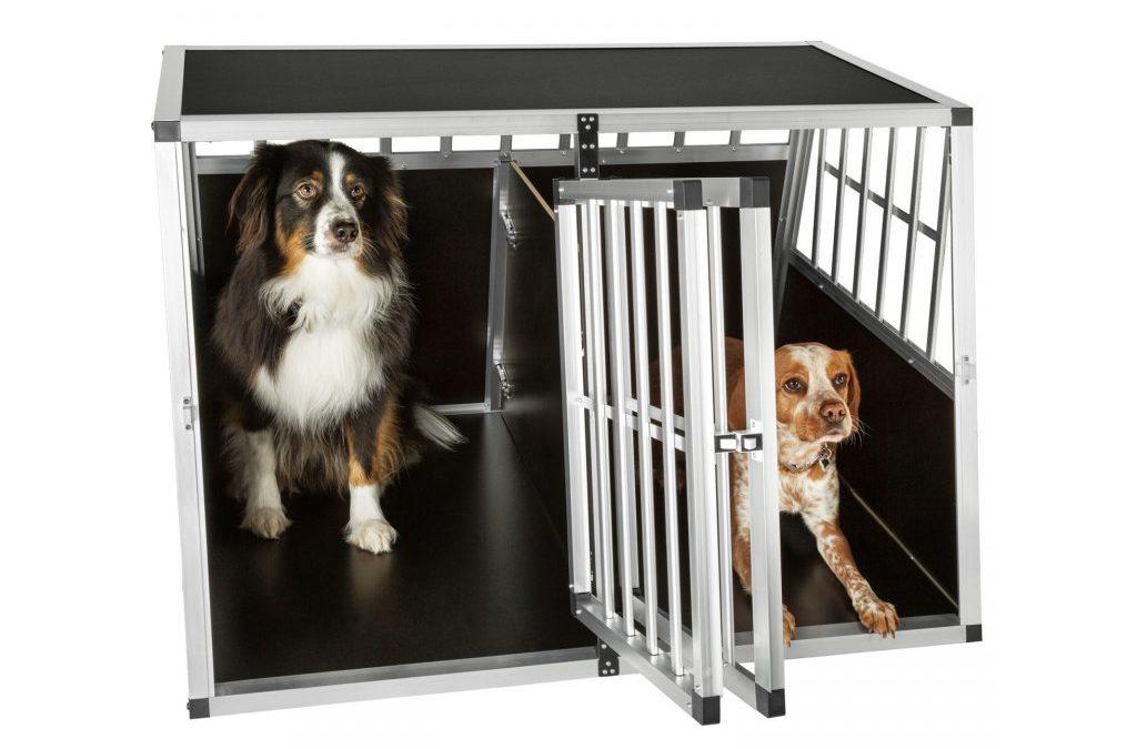 Ako vybrať prepravku pre psa?